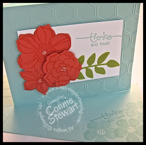Calypso Coral Secret Garden Flash Card