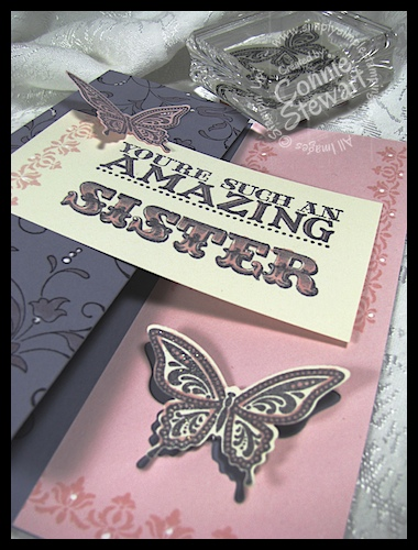 Flash Card 2.0 - Amazing Sister 2