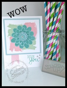 Now or WOW! - A new video series by Connie Stewart - www.SimplySimpleStamping.com