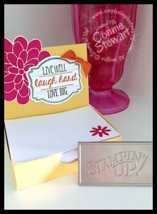 IMG_3944July 2014 Stampin' Gals Gone Wild - FREE videos & written tutorials with a $20 or more order on www.SimplySimpleStamping.com