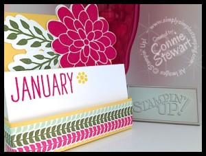 July 2014 Stampin' Gals Gone Wild - FREE videos & written tutorials with a $20 or more order on www.SimplySimpleStamping.com