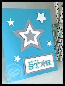 FLASH CARD - You're a Star - www.SimplySimpleStamping.com