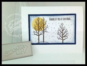 FLASH CARD Video Series - White Christmas Card by Connie Stewart - www.SimplySimpleStamping.com