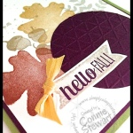 NOW or WOW card - Hello Fall - see the video at www.SimplySimpleStamping.com