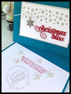 NOW or WOW / FLASH CARD - Stars & Christmas Bliss Card - www.SimplySimpleStamping.com