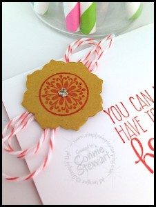 Cut chipboard with your Framelits!  Learn how on www.SimplySimpleStamping.com - February 12, 2015
