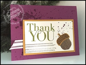 Flash Cards - Acorny Thank You by Connie Stewart - www.SimplySimpleStamping.com - see the September 10, 2015 blog post for video tutorial