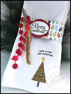 Learn how easy it is to stamp on cloth napkins for the holidays or anytime! Video tutorial available at www.SimplySimpleStamping.com - look for the December 14, 2015 blog post