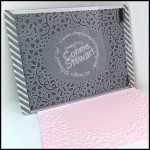 2-Minute Tuesday Tip Video - How to line up a standard card in the Confetti Embossing Folder - www.SimplySimpleStamping.com - January 12, 2016