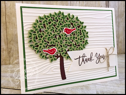 What's New Wednesday – Thoughtful Branches Bundle