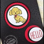 FLASH CARD Video Tutorial - Hello Puppy Window Card - see the video at www.SimplySimpleStamping.com.  Just look for the August 11, 2016 blog post!