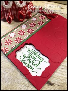 MAKE IT IN MINUTES - Create this Sweet Season card in a matter of minutes! Check it out at www.SimplySimpleStamping.com - look for the October 26, 2016 blog post