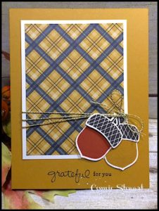 MAKE IT IN MINUTES - Create this Acorny Grateful card in a matter of minutes! Check it out at www.SimplySimpleStamping.com - look for the November 2, 2016 blog post