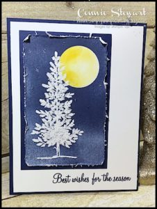 2-Minute Tuesday Tip Video - 4 Ways to Distress Cardstock - Achieve different styles of distress using any of these different tools (and you probably already own them) - check it out at www.SimplySimpleStamping.com and look for the November 29, 2016 blog post