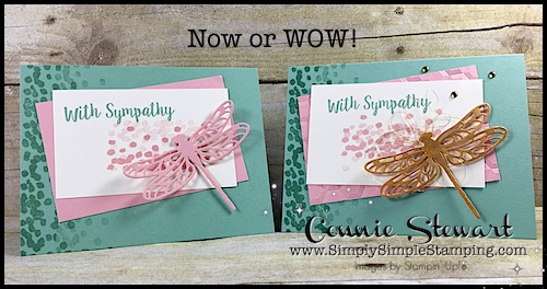 Now or WOW Flash Card – With Sympathy Dragonfly – Video No. 89