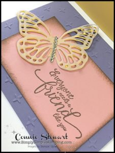 2-Minute Tuesday Tip - Vellum Tip #3 - Vellum Overlays - check out the video at www.SimplySimpleStamping.com and look for the April 25, 2017