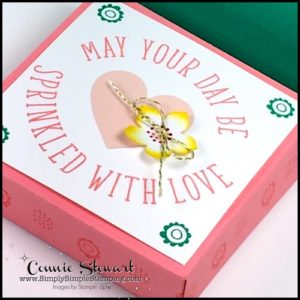 May 2017 Paper Pumpkin - Sprinkled with Love Alternative Project - Cookie Box - get the FREE Tutorial at www.SimplySimpleStamping.com - look for the May 31, 2017 blog post