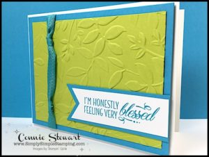 TEACH Me That! Learn how to create with Dynamic Textured Embossing Folders at www.SimplySimpleStamping.com - look for the June 15, 2017 blog post
