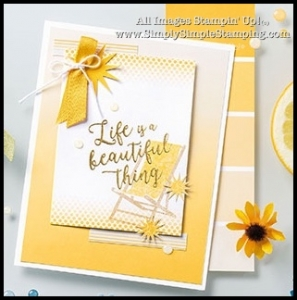 What's New Wednesday - see the COLOR THEORY SUITE from the NEW 2017-2018 Stampin' Up Annual Catalog! www.SimplySimpleStamping.com - check out blog post July 5, 2017