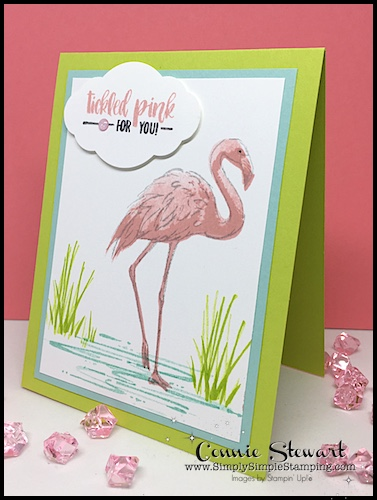 Make It Monday - TICKLED PINK FLAMINGO CARD - download the FREE tutorial at www.SimplySimpleStamping.com - look for the July 31, 2017 blog post!