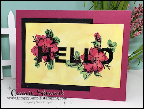 TEACH Me That! Learn how to create with ALCOHOL WATERCOLORING at www.SimplySimpleStamping.com - look for the August 3, 2017 blog post