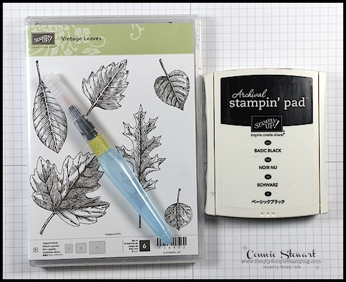 TEACH Me That! Learn how to do the BLEACH TECHNIQUE at www.SimplySimpleStamping.com - look for the August 31, 2017 blog post