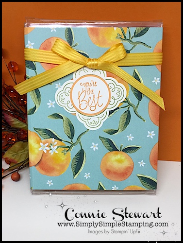 Watch the REWIND video of this week's Facebook LIVE! A ONE SHEET WONDER project - 6 CARDS in a GIFT BOX. Download the FREE TUTORIAL at www.SimplySimpleStamping.com and look for the October 13, 2017 post!