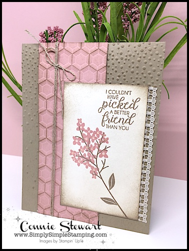 Flash Card Mash Up - Couldn't Have Picked a Better Friend card. It's so easy when you start with Flash Cards. See the card and video at www.SimplySimpleStamping.com on March 8, 2018.