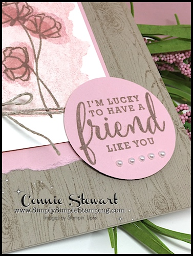 Join Connie for a MAKE IT IN MINUTES FLASH CARD video! Lucky to Have a Friend Card - www.SimplySimpleStamping.com - look for the May 23, 2018 blog post!