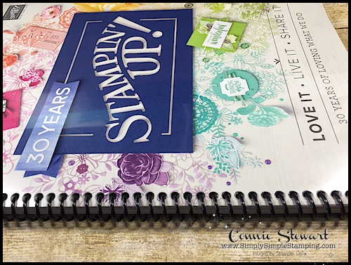 2-MINUTE TUESDAY TIP - The benefits of spiral bBinding your new catalog- www.SimplySimpleStamping.com - look for the June 5, 2018