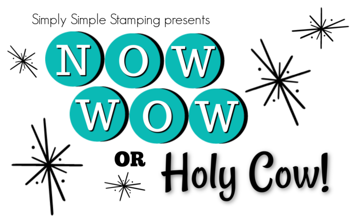 Now-Wow-or-Holy-Cow Card-Series-with-Connie-Stewart