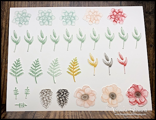 Stamped-Images-from-Stampin-Up-Painted-Seasons-Bundle-Flowers-Leaves-and-Pinecones