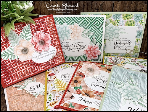 8-All-Occasions-Cards-Painted-Seasons-Bundle