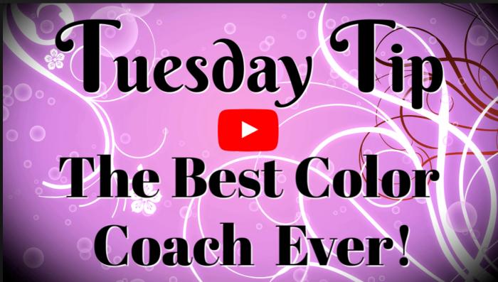 Best-Color-Coach
