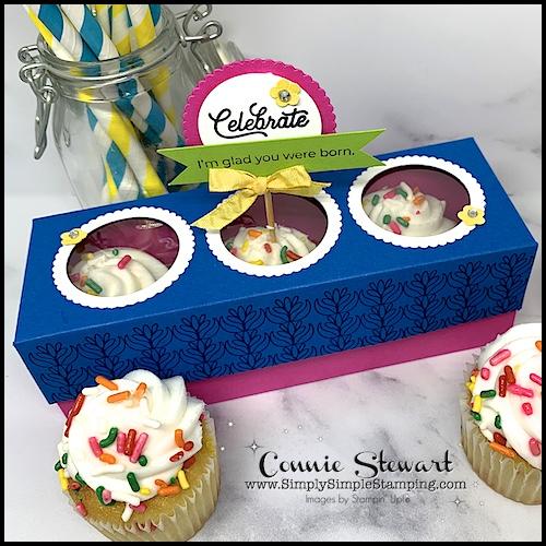 cupcake-box-the-fun-cupcake-packaging-idea